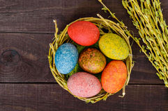 Colorful painted eggs in a nest of twigs of willow on a dark wooden background. Stock Photography