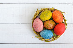 Colorful painted eggs in a nest of twigs of willow on a light background. Stock Images