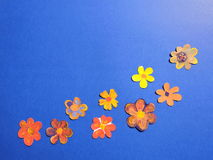 Colorful painted flowers Stock Photo