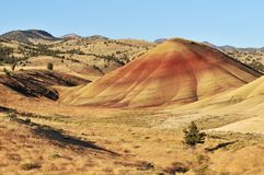 Colorful painted hills and layers of soil, Oregon Royalty Free Stock Images