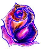 Colorful Painted Rose Stock Photos