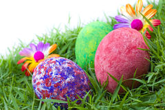 Colorful painted three easter eggs. On the grass with flowers Royalty Free Stock Photos