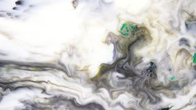 Colorful paints, loquid soapdrops mixing in white substance. Beautiful motion background with ink, soap and milk.