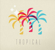 Colorful palm tree summer concept background Stock Photos