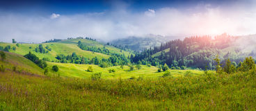 Colorful panorama of  foggy mountains in sunmmer Royalty Free Stock Photo
