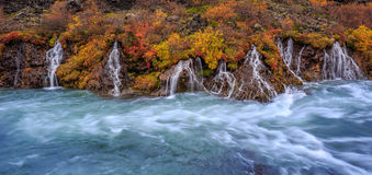 A colorful panorama view of Hraunfossar waterfalls in autumn. A colorful panorama view of Hraunfossar waterfalls, flowing from the lava field into the White Royalty Free Stock Photography