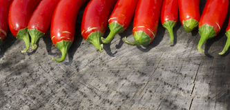 Colorful Panoramic Photo of Red Serrano Peppers. A close up panoramic photo of some bright red Serrano peppers from my garden.  I arranged them on a tree stump Royalty Free Stock Images