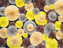 Colorful paper flower on board Stock Photos