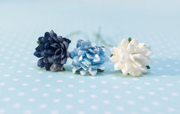 Colorful paper flowers lay on paper with polka dots Stock Photo