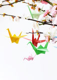 Colorful paper origami birds on flowering branches of cherry Royalty Free Stock Images
