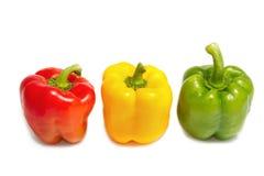 Colorful  paprika Royalty Free Stock Photo