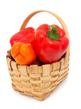 Colorful paprika in a basket. Isolated on white royalty free stock images