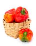 Colorful paprika in a basket. Isolated on white royalty free stock image