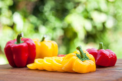 Colorful of paprika Stock Image