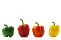 Colorful paprika row. A colorful paprika row on white background Stock Image