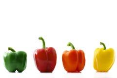 Colorful paprika row. A colorful paprika row on white background stock image