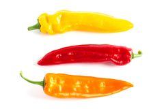 Colorful paprikas on the white background isolated. stock photo