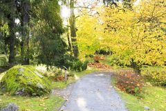 Colorful park with trees and rocks in autumn Royalty Free Stock Images