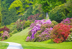 Colorful park Royalty Free Stock Photos