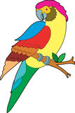 Colorful Parrot. Beautiful colorful parrot sitting on a branch Royalty Free Stock Image