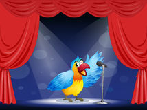 A colorful parrot at the center of the stage Stock Images