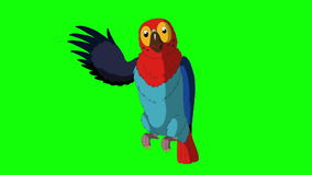 Colorful Parrot Greets. Classic Handmade Animation stock video footage