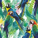 Colorful Parrots And Exotic Flowers Stock Photo