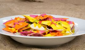 Colorful pasta in a white plate Royalty Free Stock Photos
