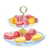 Colorful pastel cake macaron on plate served for party Royalty Free Stock Image