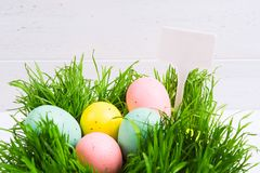 Colorful pastel Easter eggs in grass. Easter hunt cocept with white background with white label. With copy space royalty free stock images