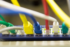Colorful patch cables Stock Photography