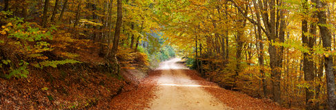Colorful path panorama Royalty Free Stock Photography