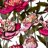 Colorful pattern with bright flowers and leaves of Royalty Free Stock Images