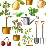 Colorful pattern of gardening tools, watering can, seeds, plants, fruits isolated on white background. Royalty Free Stock Photography