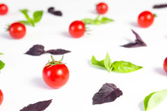 Colorful pattern made of cherry tomatoes, purple and green basil on white background. Cooking concept. Stock Image