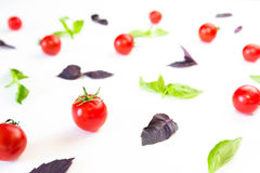 Colorful pattern made of cherry tomatoes, purple and green basil on white background. Cooking concept. Royalty Free Stock Photography