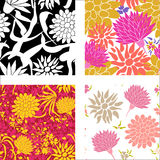 Colorful patterns with different flowers Royalty Free Stock Photo