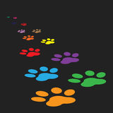 Colorful paw print icon vector illustration isolated on black background. Stock Photos