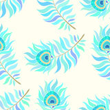 Colorful peacock feathers. Seamless vector pattern. Stock Photography