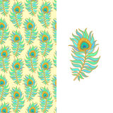 Colorful peacock feathers. Seamless vector pattern. Stock Images