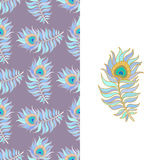 Colorful peacock feathers. Seamless vector pattern. Stock Image