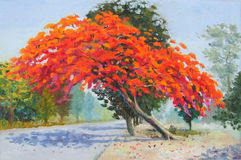 Colorful of peacock flower tree. Painting oil color landscape original colorful of peacock flower tree vector illustration