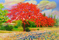 Colorful of peacock red flower and emotion in cloud. Painting oil color landscape original colorful of peacock flower tree and emotion in blue with cloud in the Stock Photography