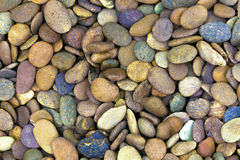 Colorful  pebble stones for background texture. Stock Photos