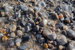 Colorful pebble stones under sea water. stock images