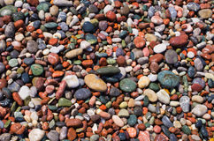 Colorful pebbles on the beach Royalty Free Stock Images