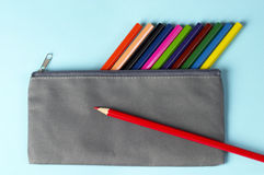 Colorful pencils in a case Stock Image