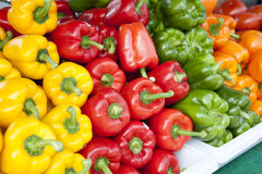 Colorful Pepper. In the market Stock Photo
