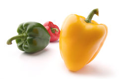 Colorful pepper Stock Photography