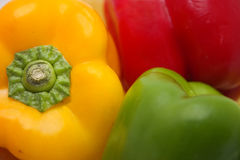 Colorful pepper abstract Stock Photography